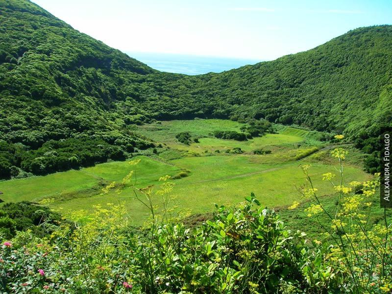 Monte Brasil (PRC4TER)